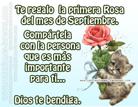 Te regalo la primera Rosa del mes de Septiembre. Compártela con la persona que es más importante para ti... Dios te bendiga.
