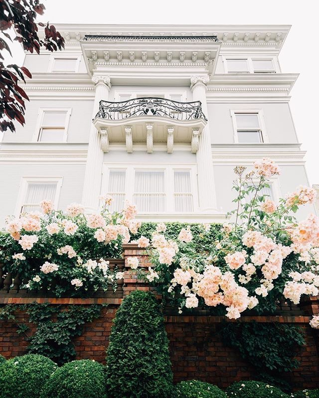 San Francisco. A walk in Pacific Heights is always an architectural feast!