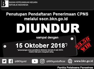 Batas Akhir Pendaftaran CPNS 2018 Resmi Diperpanjang Sampai Tanggal 15 Oktober, Syarat Pendaftaran Cek di Link Sscn.bkn.go.id