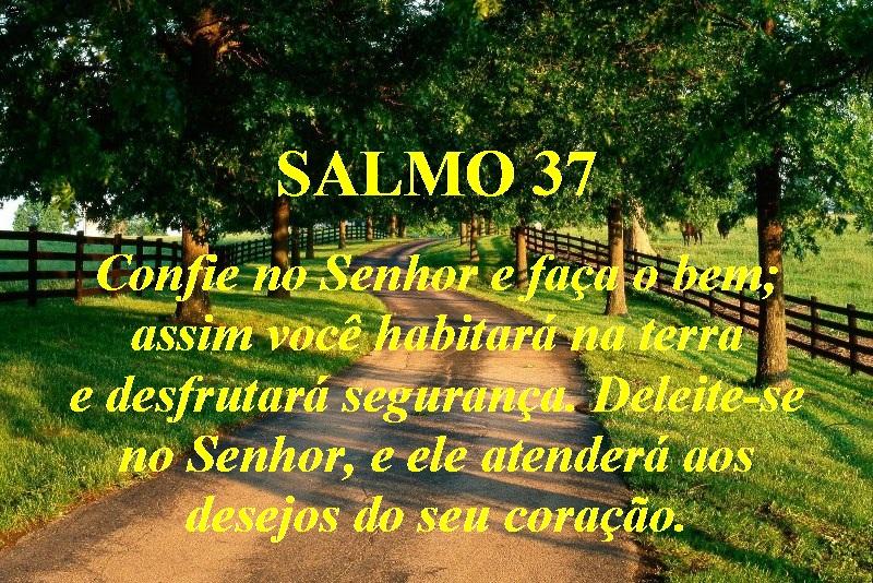 Pérolas Preciosas-Cartões: Salmos 33 a 42
