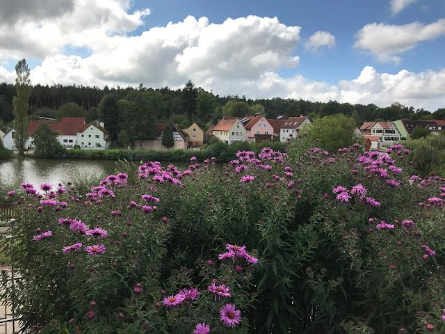 Blick über die Zaunaster aufs Dorf (c) by Joachim Wenk