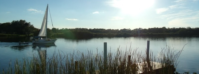 Paisajes en el Caloosahatchee River
