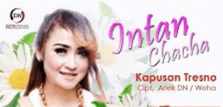 Lirik Lagu Kapusan Tresno - Intan Chacha