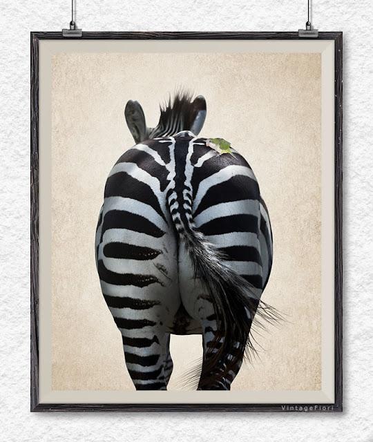 Zebra print zebra art Etsy