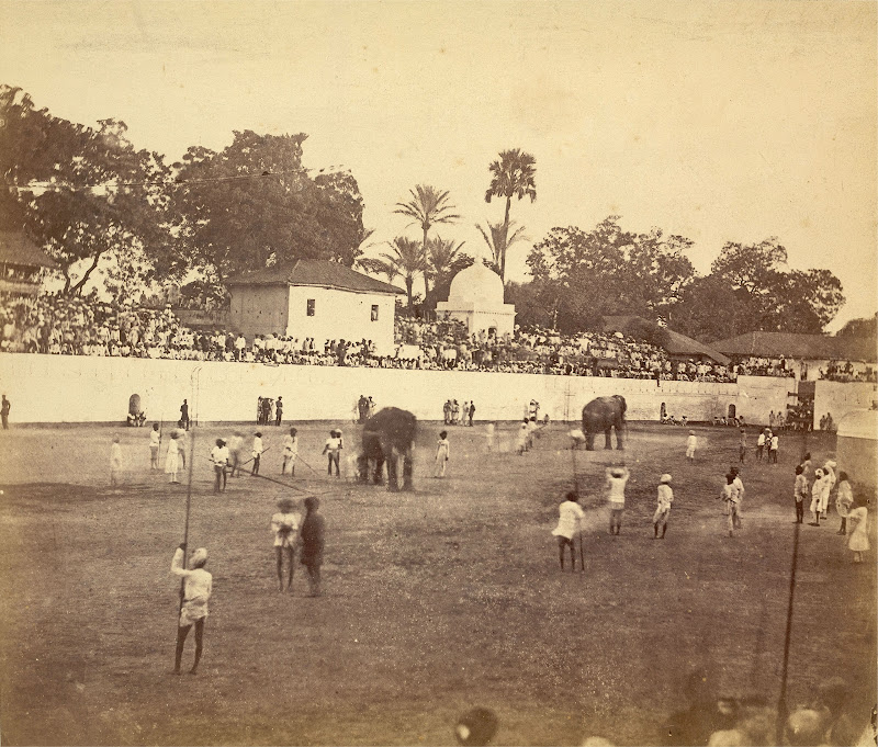 Spectators Watching an Event involving Elephants in an Arena - Baroda (Vadodara), Gujarat - Circa 1880