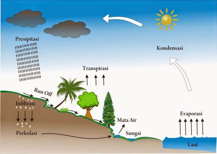Siklus Hidrologi Dan Proses Proses Terjadinya Amuzigi