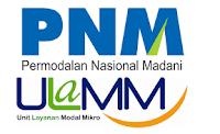 Walk in Interview Account Officer Mikro Di PT Permodalan Nasional Madani Solo & Madiun
