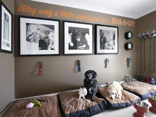 casa con cani immagine