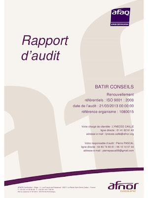 Canevas de rapports d'audit (100 exemples) PDF Gratuit