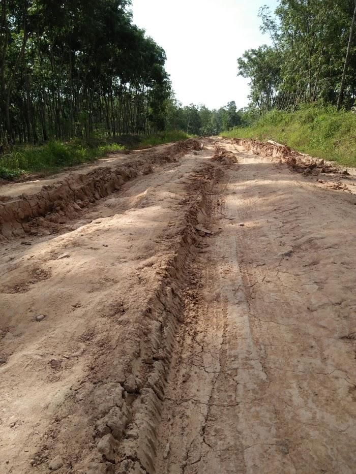 Warga Meminta Perbaikan Jalan Poros Provinsi Di Tubaba.