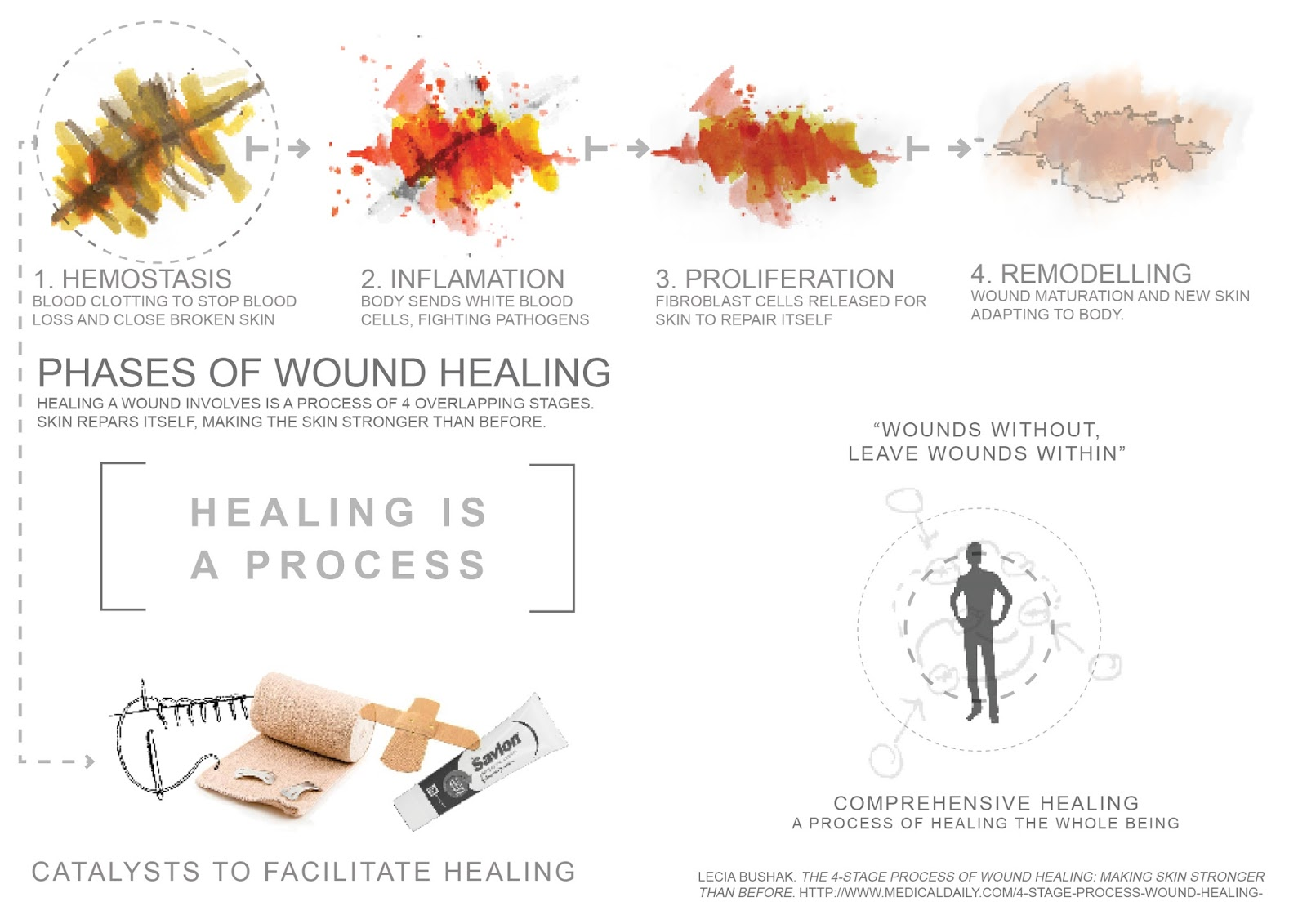 skin wound healing overview hemostasis inflammatory phase