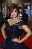 Payal Ghosh aka Harika in Dark Blue Deep Neck Sleeveless Gown at 64th Jio Filmfare Awards South 2017 ~  Exclusive 128.JPG