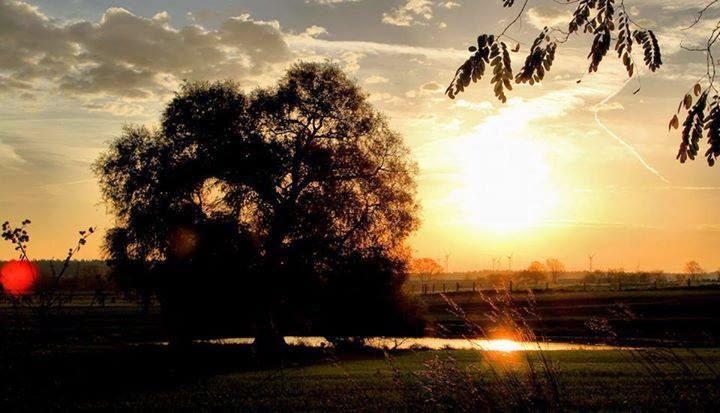 Guten Morgen Guten Morgen Guten Morgen Sonnenschein