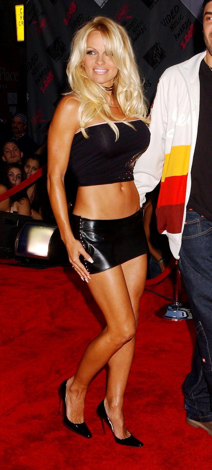 Pamela Anderson Leather