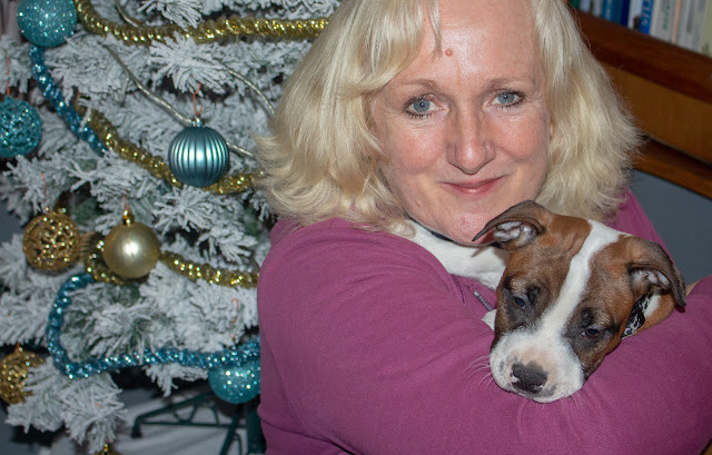 Photo of me having a cuddle with Ruby by the Christmas tree on Ravensdale