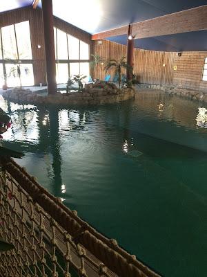 Vue d'ensemble de la piscine de l'hôtel