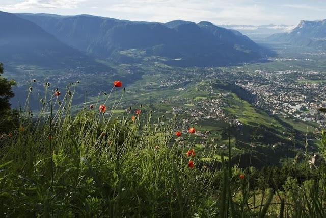 Herrlicher Ausblick über das schöne Etschtal im Herzen Südtirols...