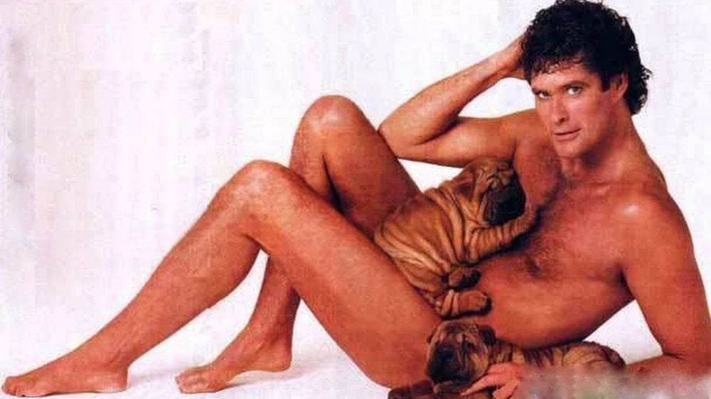 Just David Hasselhoff With Some Puppies Vintage Everyday