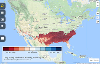 February 12, 2017 early Spring leaf out map