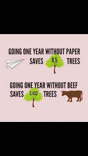no beef saves trees