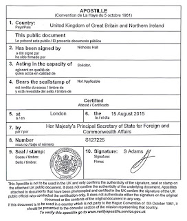 Регистрационный документ Insolt