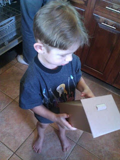 making birdhouse with toddler