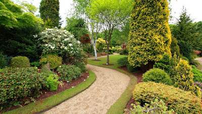 Outdoor garden ideas & Front house landscaping cured him! Inspiring story!