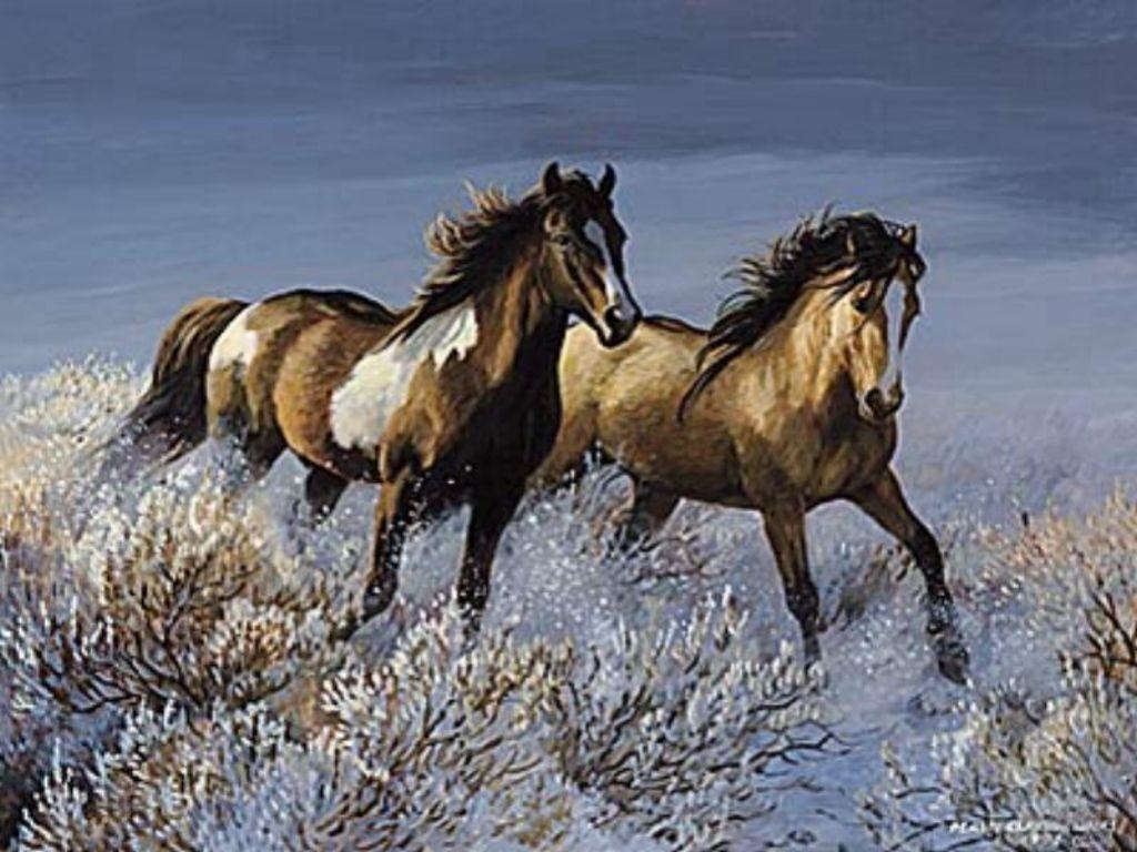 wild horses running wallpapers - photo #20
