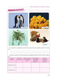 8. Sınıf Fen Bilimleri Ders Kitabı Cevapları Tutku Sayfa-156