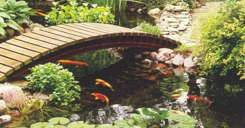 HOW TO MAKE YOUR OWN BACKYARD FISH POND ~ Free Quality Plr ...