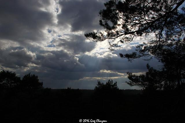 Caprices du ciel au dessus des Gorges d'Apremont, (C) 2016 Greg Clouzeau