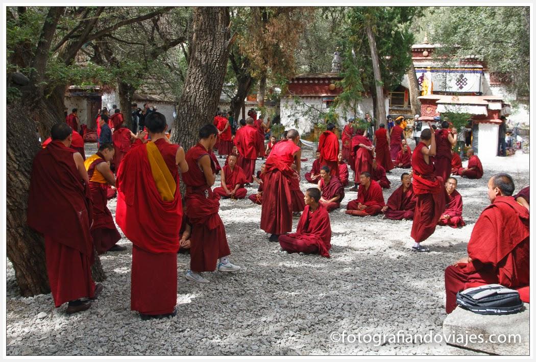 Debate monjes budista en monasterio de Sera, Lhasa, Tibet