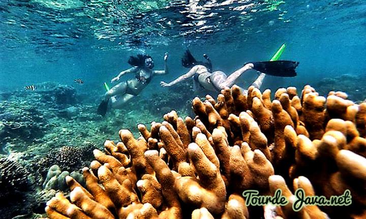 underwater wisata pulau tidung