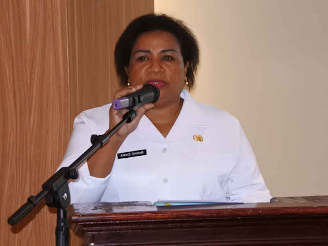 Pemprov Papua Minta Pemerintah Pusat Bantu Mobil Perlindungan
