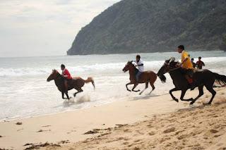 Pertama di Aceh, pacuan kuda di pinggir pantai