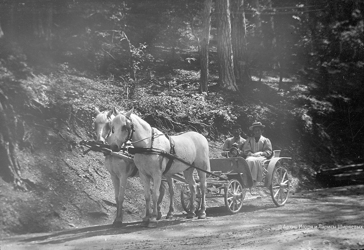 Старое фото Крыма. Карета