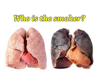 курил бросил 4