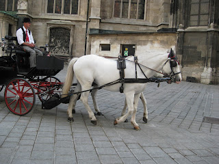 Horse and carriage rides offered from Stephansdom