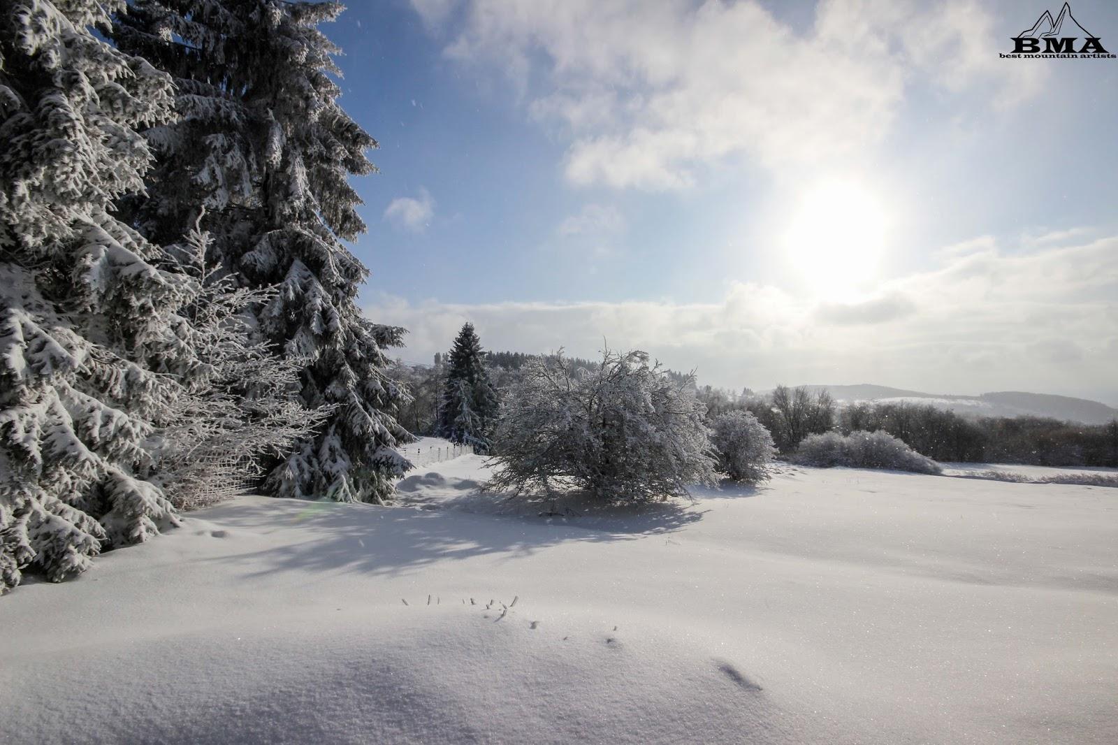 Schneebericht Vogelsberg