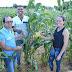 BAHIA / Festas juninas têm sabor da agricultura familiar