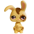 Littlest Pet Shop Gift Set Rabbit (#582) Pet