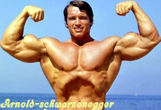 Arnold Schwarzenegger Body Building