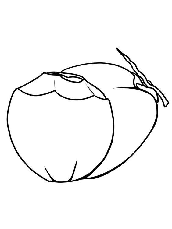 Tranh tô màu quả dừa nước