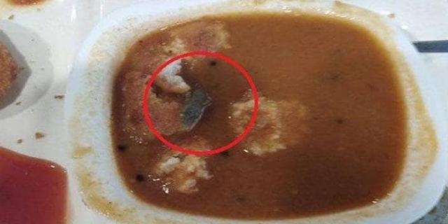 HALDIRAM ने परोस दिया छिपकली का सांभर, वीडियो वायरल | BUSINESS NEWS