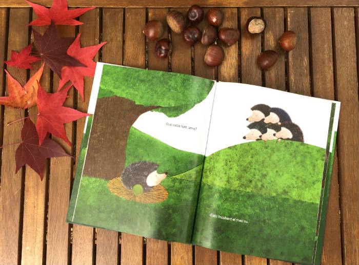 Cuentos libros infantiles sobre la estación del otoño, el huevo del erizo tramuntana