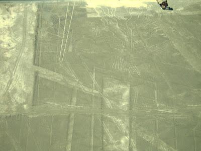 ナスカ 地上絵 木