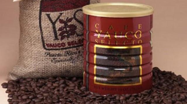 kopi Selecto AA Yauco Coffee salah satu kopi terbaik dan termahal di dunia