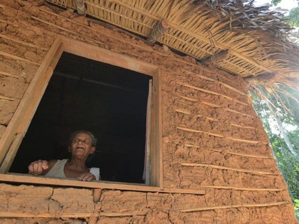 Censo 2020 terá informações sobre indígenas e quilombolas; levantamento começa dia 20