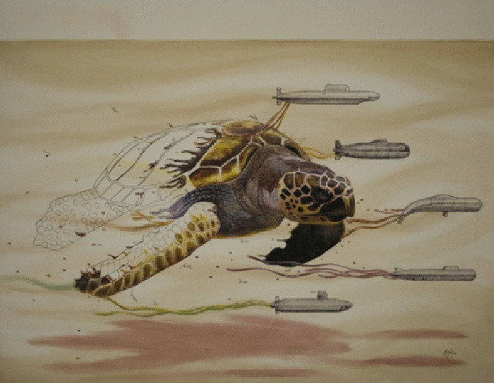 12-The-Turtle-Ricardo-Solis-Surreal-Illustrations-of-Animals-in-Mid-Construction-www-designstack-co