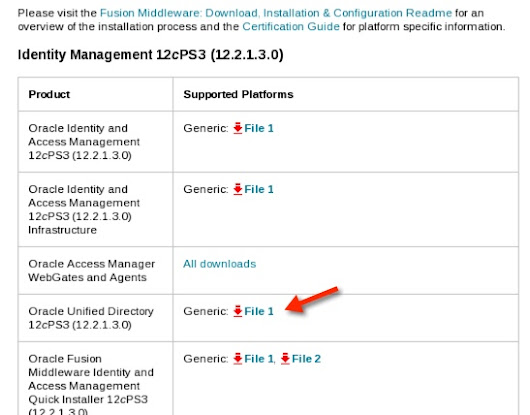 Oracle Unified Directory 12c (12.2.1.3.0) standalone installation & configuration